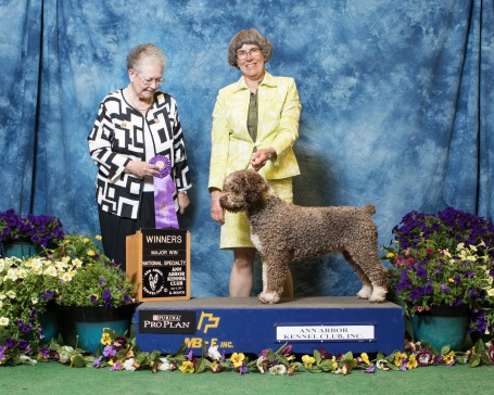 Winners Male SWD Specialty 2017
